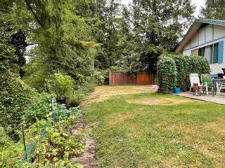 Photo 6: 23553 DOGWOOD Avenue in Maple Ridge: East Central House for sale : MLS®# R2600353