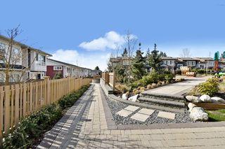 "Photo 29: 59 24108 104 Avenue in Maple Ridge: Albion Townhouse for sale in ""Ridgemont"" : MLS®# R2552085"