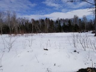 Photo 1: Lot 11 Stewood Drive in Howie Centre: 207-C. B. County Vacant Land for sale (Cape Breton)  : MLS®# 202106669