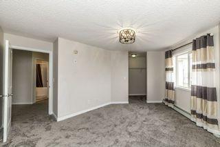 Photo 13: 329 16221 95 Street in Edmonton: Zone 28 Condo for sale : MLS®# E4250515