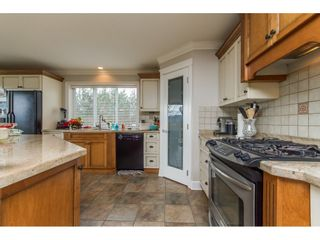 Photo 7: 1030 ROSS Road in Abbotsford: Aberdeen House for sale : MLS®# R2147511