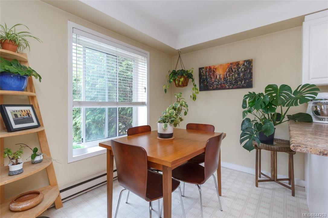 Photo 6: Photos: 2546 Garden St in Victoria: Vi Oaklands Full Duplex for sale : MLS®# 844253