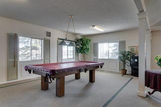 Photo 25: 18 Del Monica Villas NE in Calgary: Monterey Park Row/Townhouse for sale : MLS®# A1135510