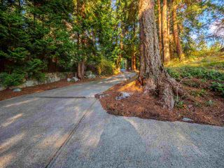 "Photo 11: 7101 DALE Road in Sechelt: Sechelt District House for sale in ""Caleda Estates"" (Sunshine Coast)  : MLS®# R2515160"