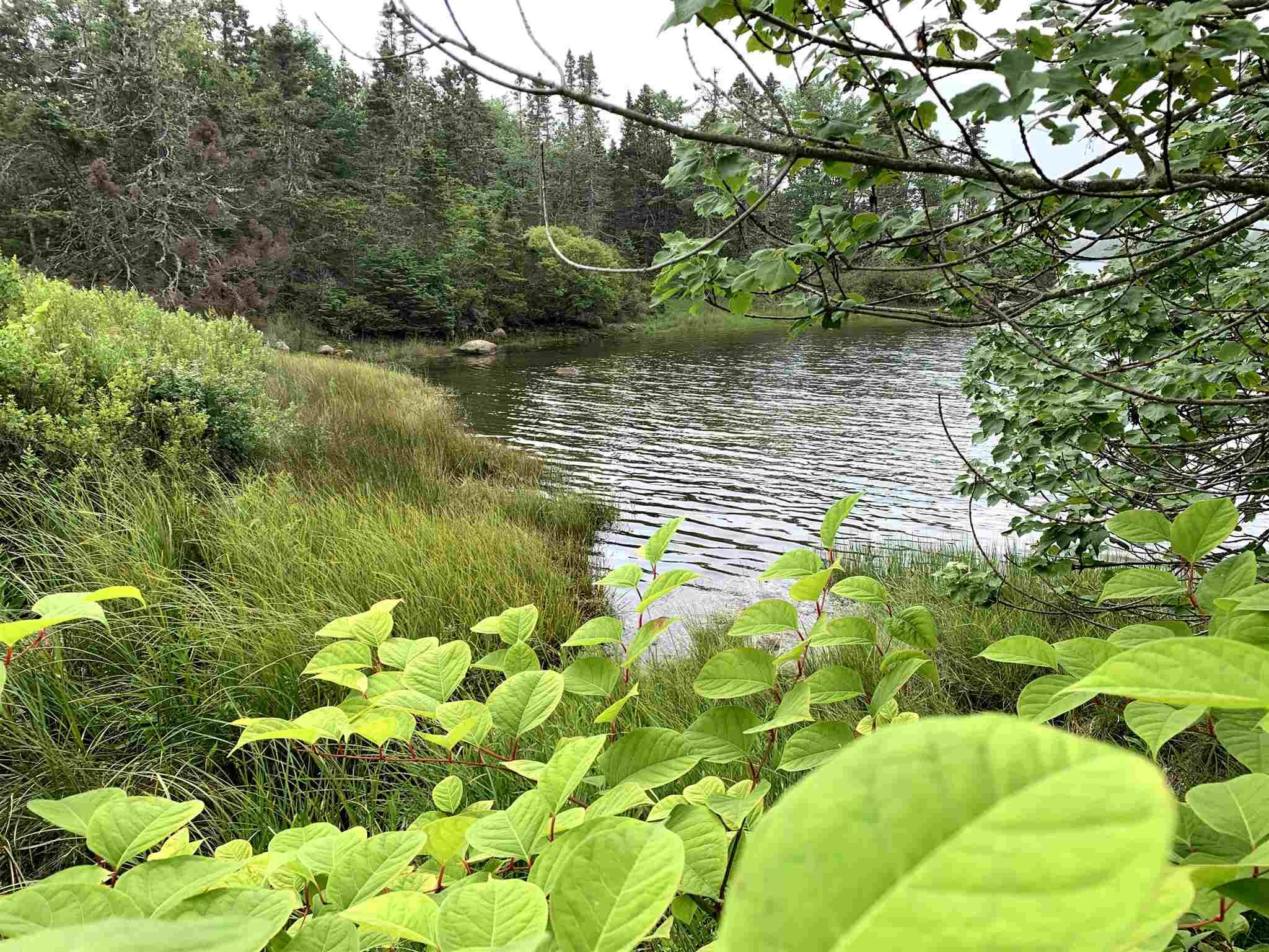 Photo 3: Photos: Lot 5A East Dover Road in East Dover: 40-Timberlea, Prospect, St. Margaret`S Bay Vacant Land for sale (Halifax-Dartmouth)  : MLS®# 202104851