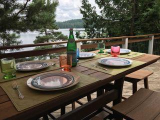 Photo 5: 1336 Grace River Road in Dysart et al: House (Bungalow) for sale : MLS®# X4560931