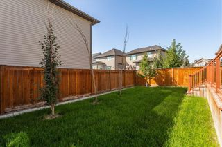 Photo 38: 166 Cranford Green SE in Calgary: Cranston Detached for sale : MLS®# A1062249