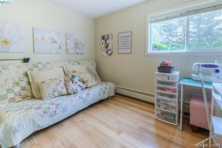 Photo 13: 102 3800 Quadra St in VICTORIA: SE Maplewood Condo for sale (Saanich East)  : MLS®# 835010