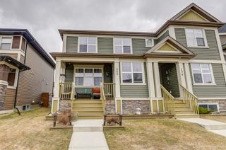 Main Photo: 302 CHAPARRAL VALLEY Drive SE in Calgary: Chaparral Semi Detached for sale : MLS®# A1092701