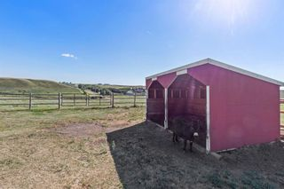 Photo 38: 284236 Range Road 275 in Rural Rocky View County: Rural Rocky View MD Detached for sale : MLS®# A1144573