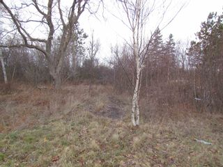 Photo 1: 2127 Highway 236 in Mosherville: 403-Hants County Vacant Land for sale (Annapolis Valley)  : MLS®# 202100967