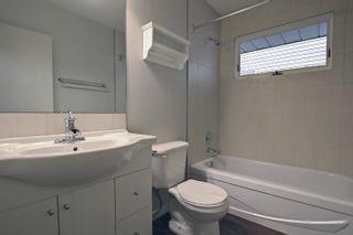 Photo 16: 8304 148 Street in Edmonton: Zone 10 House for sale : MLS®# E4265005