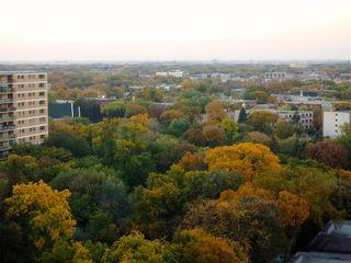 Photo 30: 1501 55 Nassau Street in Winnipeg: Osborne Village Condominium for sale (1B)  : MLS®# 202013806