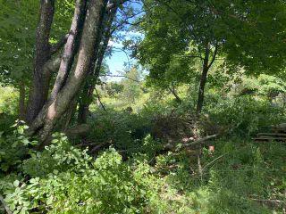 Photo 5: Lot North Street in Westville: 107-Trenton,Westville,Pictou Vacant Land for sale (Northern Region)  : MLS®# 202012391