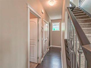 Photo 9: 362 NOLAN HILL Drive NW in Calgary: Nolan Hill House  : MLS®# C4014838