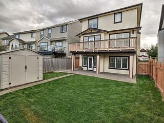 Photo 29: 656 Copperfield Boulevard SE in Calgary: Copperfield Detached for sale : MLS®# A1143747