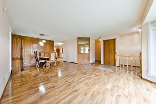 Photo 5: 45 Martinview Crescent NE in Calgary: Martindale Detached for sale : MLS®# A1112618