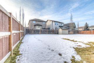 Photo 36: 294 Cranston Drive SE in Calgary: Cranston Semi Detached for sale : MLS®# A1064637