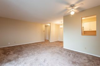 Photo 6: 205 615 Alder St in Campbell River: CR Campbell River Central Condo for sale : MLS®# 887616