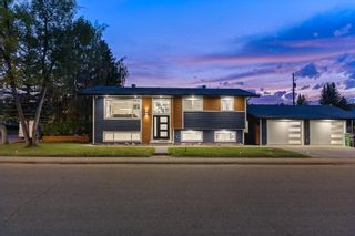 Photo 33: 10011 Warren Road SE in Calgary: Willow Park Detached for sale : MLS®# A1146129