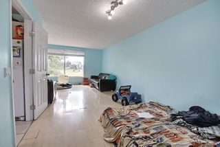 Photo 11: 51 Erin Park Close SE in Calgary: Erin Woods Detached for sale : MLS®# A1138830