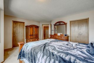 Photo 22: 604 High View Gate NW: High River Detached for sale : MLS®# A1071026