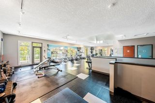 Photo 49: 1402 24 Hemlock Crescent SW in Calgary: Spruce Cliff Apartment for sale : MLS®# A1146724