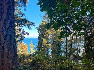 Photo 9: Lot 17 DL 71: Galiano Island Land for sale (Islands-Van. & Gulf)  : MLS®# R2616795