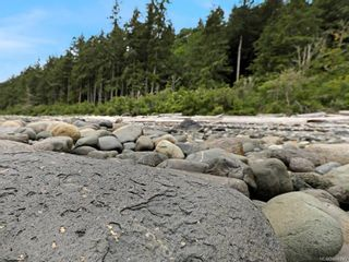 Photo 66: Lot 2 Eagles Dr in : CV Courtenay North Land for sale (Comox Valley)  : MLS®# 869395