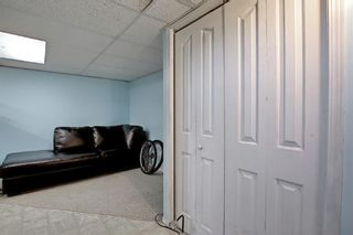 Photo 24: 51 Erin Park Close SE in Calgary: Erin Woods Detached for sale : MLS®# A1138830