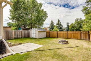 Photo 24: 11 Emberdale Way SE: Airdrie Detached for sale : MLS®# A1124079