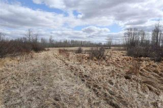 Photo 23: Twp 510 RR 33: Rural Leduc County Rural Land/Vacant Lot for sale : MLS®# E4239253