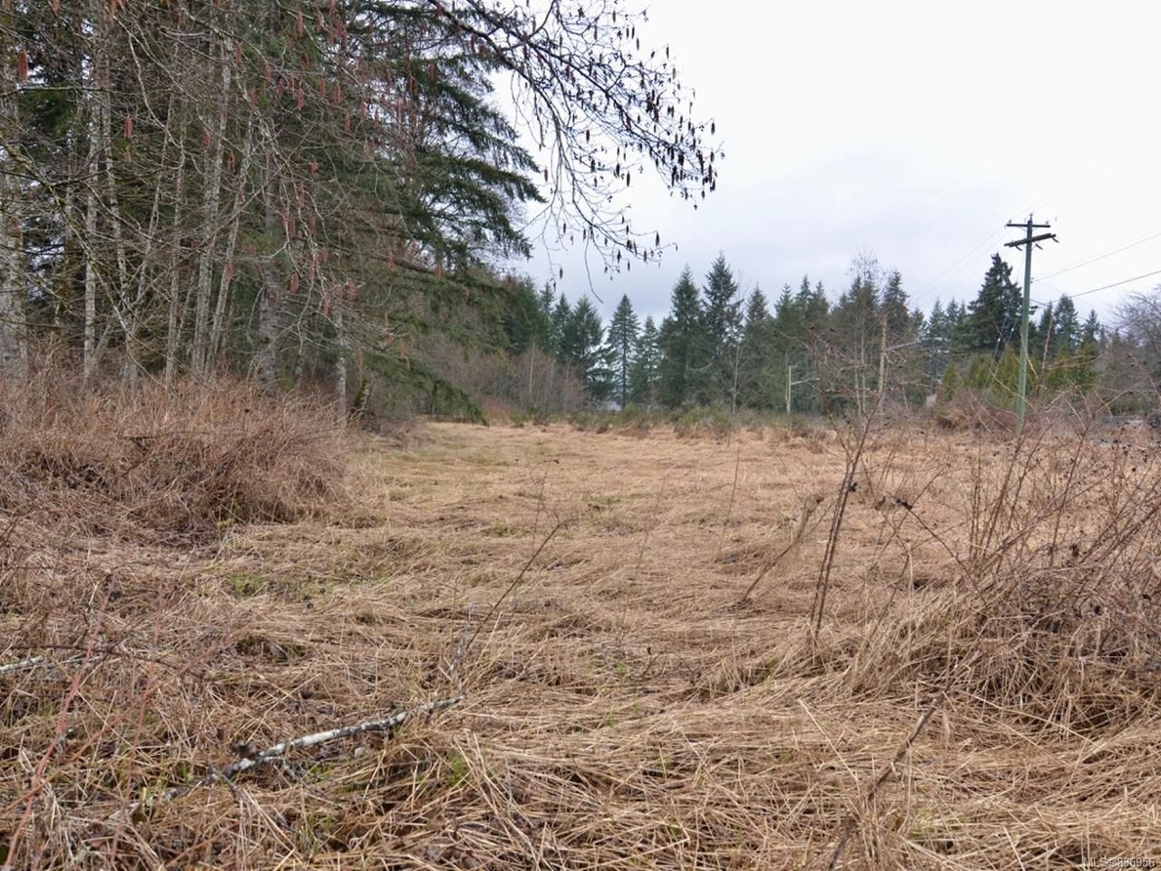 Photo 3: Photos: Lot A Ulverston Ave in CUMBERLAND: CV Cumberland Other for sale (Comox Valley)  : MLS®# 836956