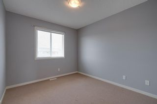 Photo 28: 252 Silverado Range Close SW in Calgary: Silverado Detached for sale : MLS®# A1125345