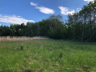 Photo 6: 24190 Meadow Drive in Rural Rocky View County: Rural Rocky View MD Residential Land for sale : MLS®# A1098168