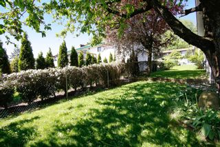 Photo 15: 35138 SPENCER Street in Abbotsford: Abbotsford East House for sale : MLS®# R2059774