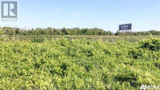 Photo 3: PT LT20 CONCESSION 7 DR in Oro-Medonte: Agriculture for sale : MLS®# S4701501