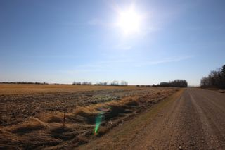 Photo 8: Lot 1 TWP 564 RR 250: Rural Sturgeon County Rural Land/Vacant Lot for sale : MLS®# E4265820