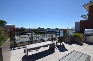 Photo 15: 223 1610 Store St in Victoria: Vi Downtown Condo for sale : MLS®# 843798