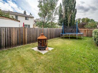 Photo 36: 161 Douglasbank Way SE in Calgary: Douglasdale/Glen Detached for sale : MLS®# A1141406