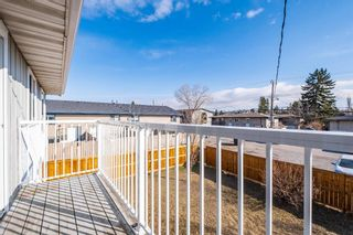 Photo 9: 7 4328 75 Street NW in Calgary: Bowness Apartment for sale : MLS®# A1094944