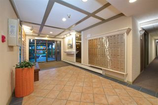 """Photo 5: 214 2255 W 8TH Avenue in Vancouver: Kitsilano Condo for sale in """"WEST WIND"""" (Vancouver West)  : MLS®# R2240375"""