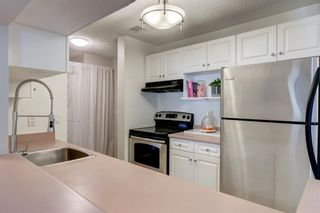 Photo 6: 208 540 18 Avenue SW in Calgary: Cliff Bungalow Apartment for sale : MLS®# A1124113