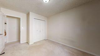 Photo 26: 3206 35A Avenue in Edmonton: Zone 30 House for sale : MLS®# E4259198
