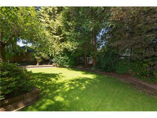 """Photo 14: 3575 W 49TH Avenue in Vancouver: Southlands House for sale in """"Southlands"""" (Vancouver West)  : MLS®# V1084209"""
