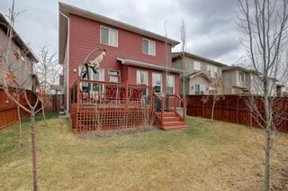 Photo 29: 53 Legacy Terrace SE in Calgary: Legacy Detached for sale : MLS®# A1098878