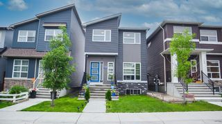 Main Photo: 272 Cornerstone Passage NE in Calgary: Cornerstone Detached for sale : MLS®# A1134139