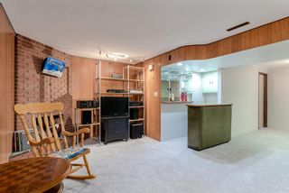 Photo 31: 744 Mapleton Drive SE in Calgary: Maple Ridge Detached for sale : MLS®# A1125027