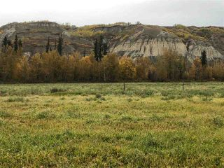 Photo 7: JOHNSTON ROAD in South Peace: Fort St. John - South Peace Land for sale (Fort St. John (Zone 60))  : MLS®# R2308370