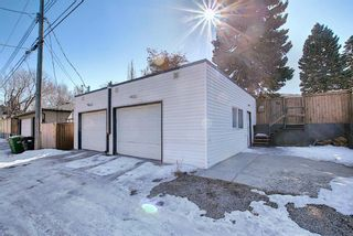Photo 47: 56 Langton Drive SW in Calgary: North Glenmore Park Detached for sale : MLS®# A1081940